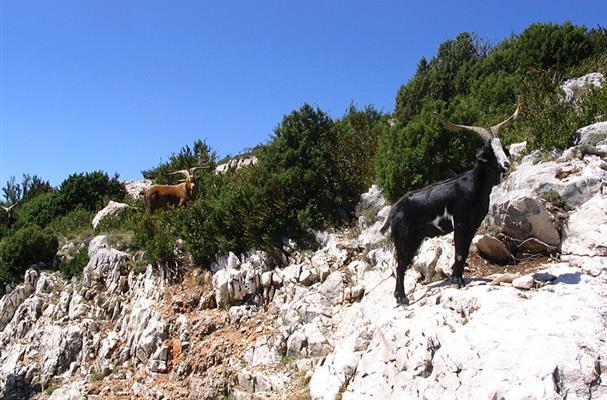 Les gorges du verdon tourisme bouches du rhone vacances - Distance entre marseille et salon de provence ...